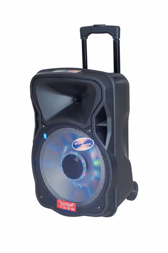 Imagen de Parlante Amplificador MDM CX-12D